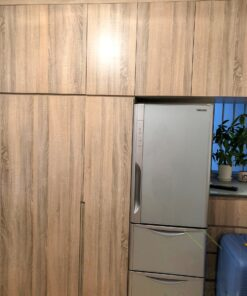 雪櫃放在客廳儲物櫃中