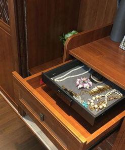 超級隱蔽的櫃中櫃 家用隱藏式保險櫃,適合應用在訂造保險櫃及衣櫃或其他由我們設計師建議的訂造傢俬之上