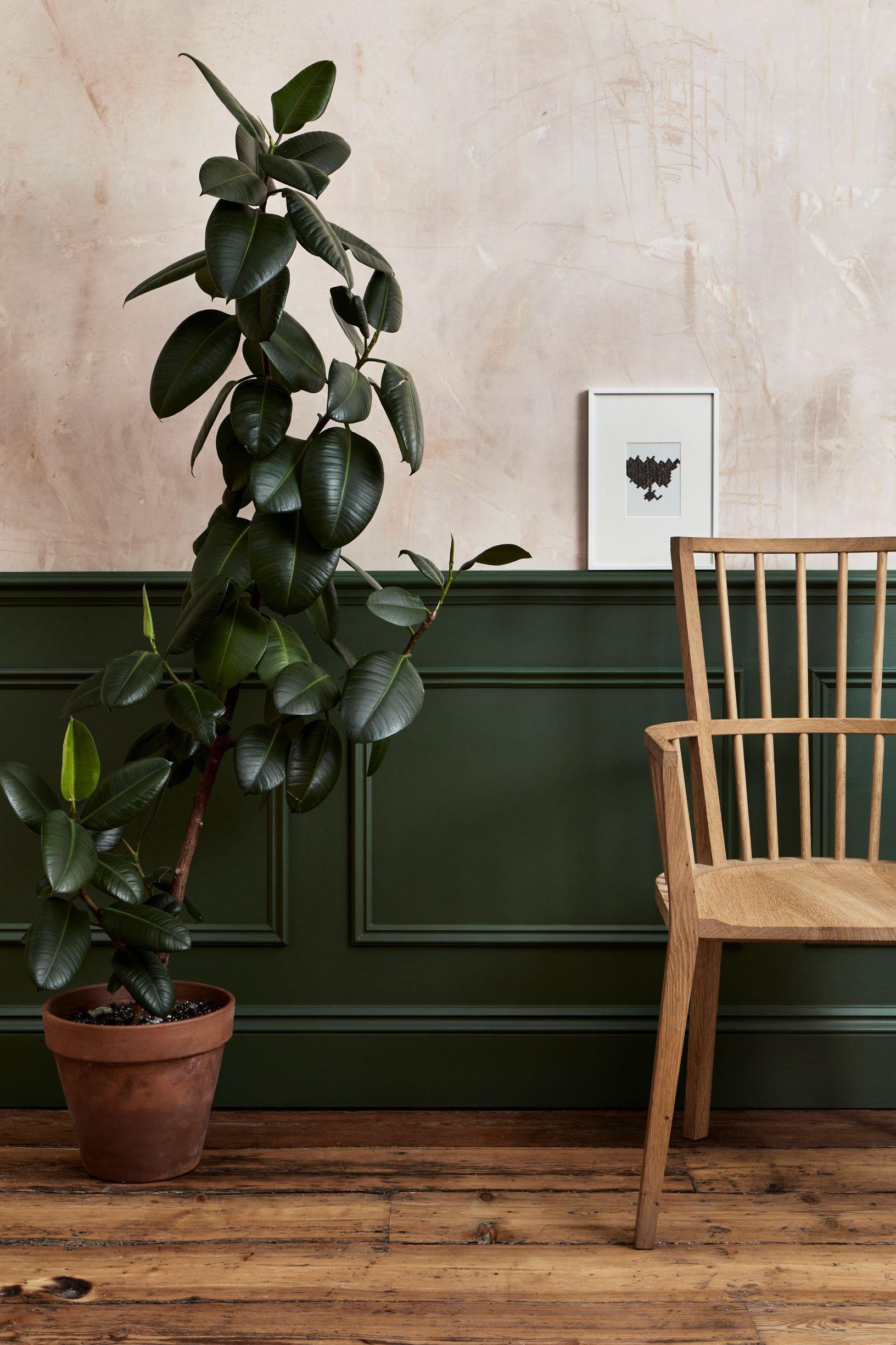 外國很流行將房間的牆身油成墨綠色,配搭原木色傢俬有種清新送爽的感覺